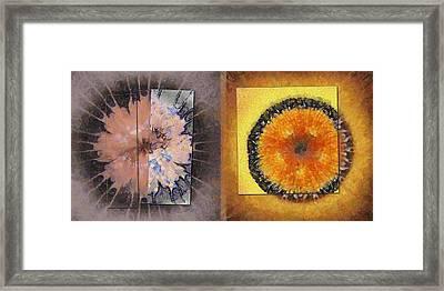 Mutinously Stiffness Flower  Id 16164-100421-32611 Framed Print by S Lurk
