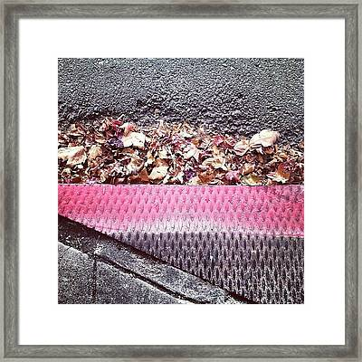 My Baby Framed Print by Courtney Haile