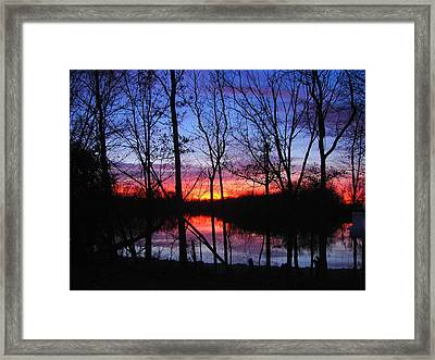 My Backyard Framed Print by J R Seymour