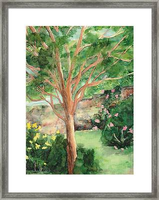 Framed Print featuring the painting My Backyard by Vicki  Housel
