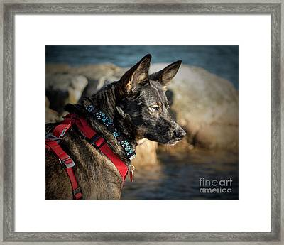 My Beauty Framed Print