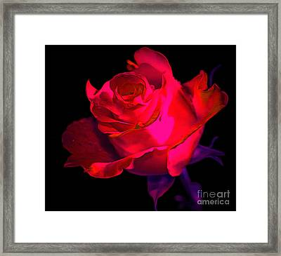 My Beloved Framed Print by Krissy Katsimbras