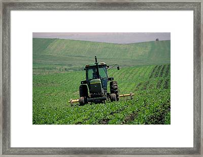 My Big Green Tractor Framed Print