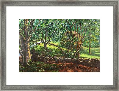 My Cabin In The Woods Framed Print by Dominique Amendola