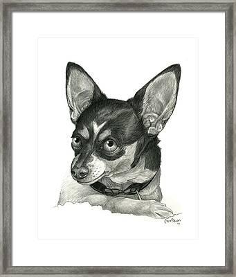 My Chihuahua Framed Print by Cara Bevan