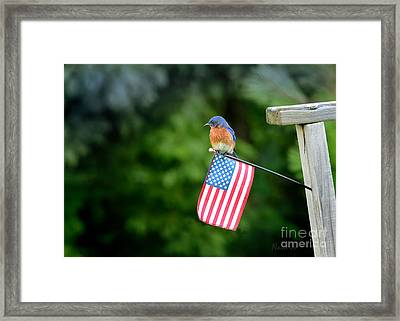 My Country Framed Print by Nava Thompson