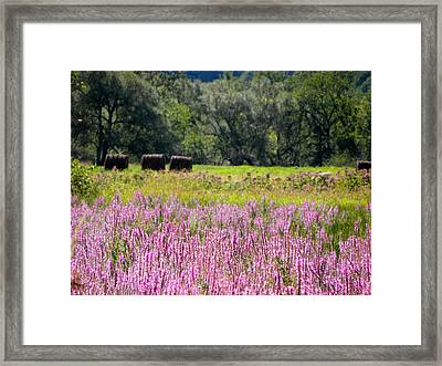 My Country View Framed Print by Jennifer Compton