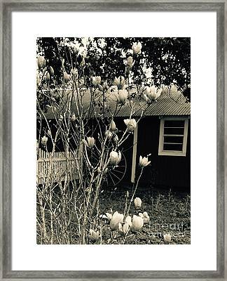 My Daughters Magnolia Framed Print