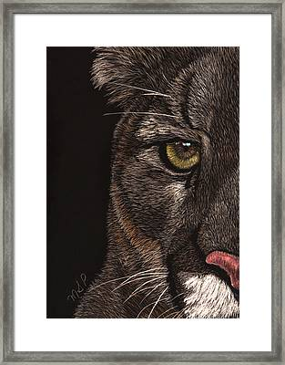 My Eye's On You Framed Print by Margaret Sarah Pardy