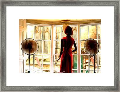 My Fans Framed Print by Jez C Self