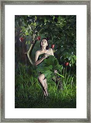 My Fantasy Framed Print by Andre Arment
