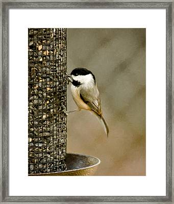 My Favorite Perch Framed Print