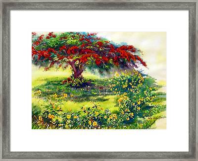 My Flamboyant Tree Framed Print by Estela Robles