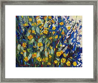 My Flower Bed Framed Print by Phil Chadwick