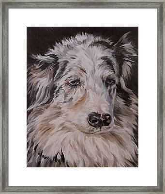 My Funny Valentine - Dog Portrait Framed Print by Cheryl Pass