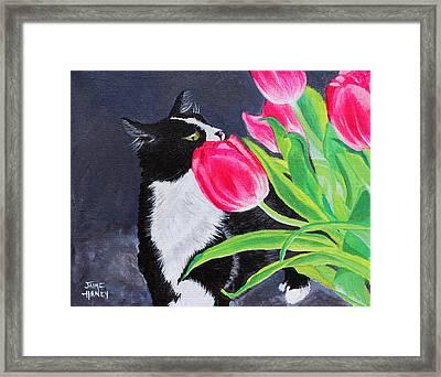 My Funny Valentine Framed Print by Jaime Haney