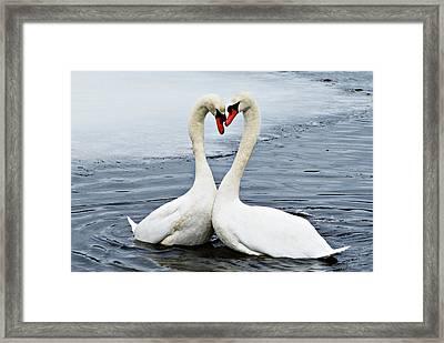 My Funny Valentine Framed Print