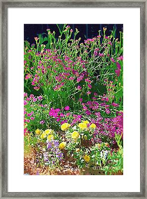 Framed Print featuring the photograph My Garden   by Donna Bentley