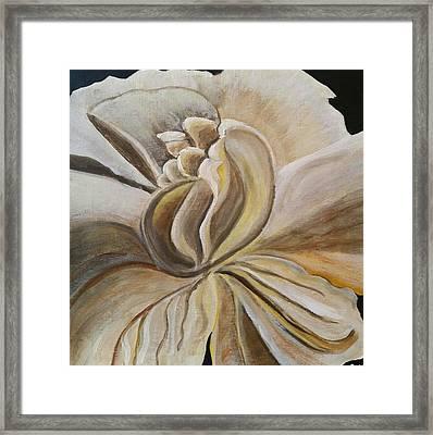 My Gardenia  Framed Print
