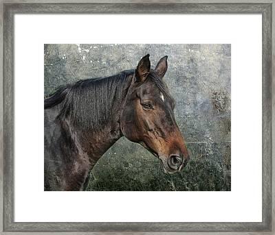 My Girl Framed Print by Joachim G Pinkawa