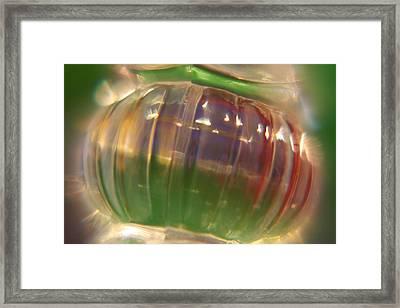 My Glass Ball Framed Print