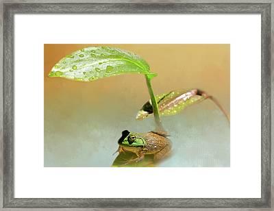 My Green Sunbrella Framed Print