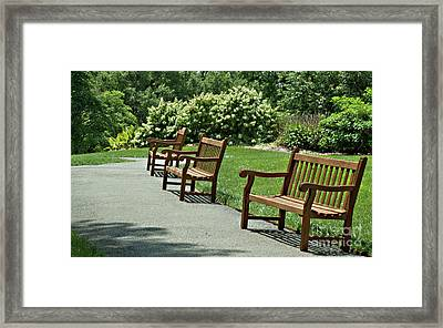 My Kind Of Walking Path Framed Print