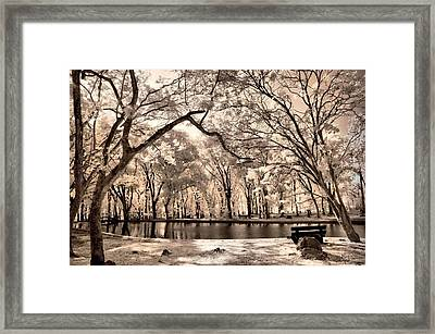 My Lake Framed Print by Mario Bennet