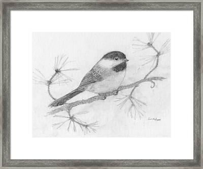 My Little Chickadee Framed Print by Cynthia  Lanka