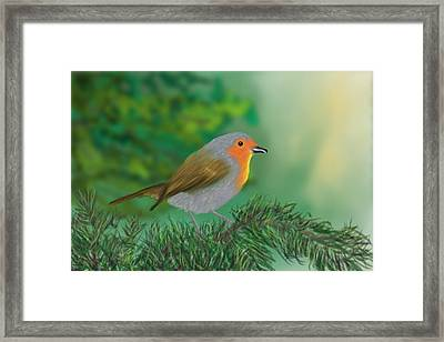 My Little Chickadee Framed Print by Harry Dusenberg