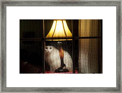 My Major Award Framed Print by Kenneth Albin