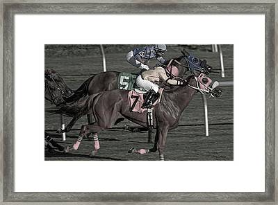 My Money On The Chestnut Framed Print by Betsy Knapp