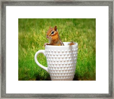 My Morning Cup Of Joe Framed Print