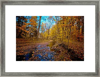 My Morning Walk Framed Print by Linda Unger