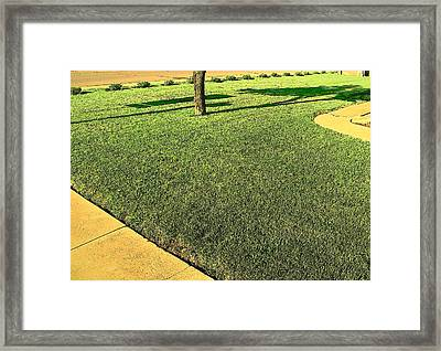 My Neighbor's Yard Framed Print by Lenore Senior