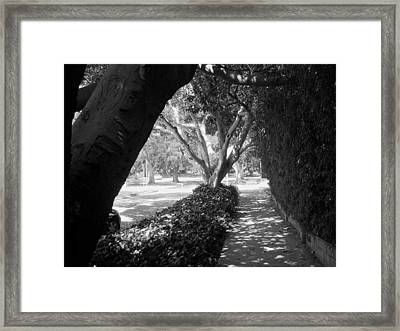 my neighbourhood-Los Feliz Framed Print by Adolfo hector Penas alvarado