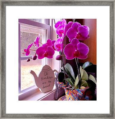 My Orchids Framed Print