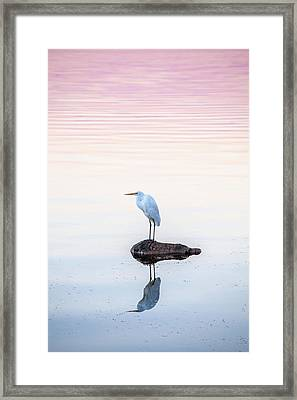 My Own Private Island Framed Print