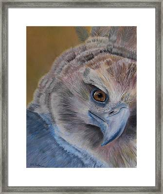 My Point Of View Framed Print by Ceci Watson