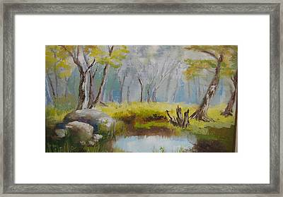 My Pond Framed Print by Mabel Moyano
