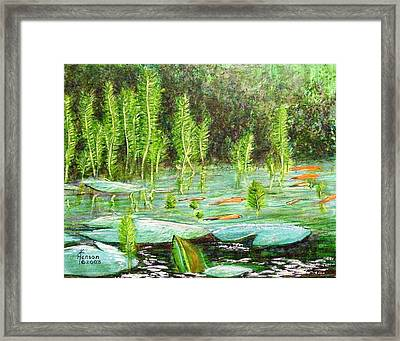 My Pond Two Framed Print by Kenny Henson