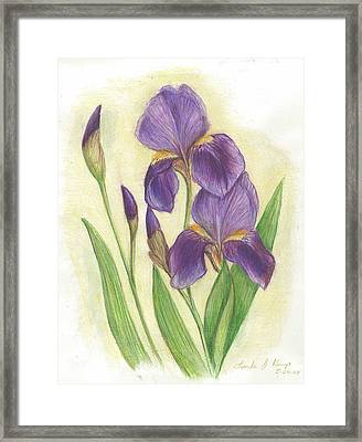 My Purple Irises Framed Print