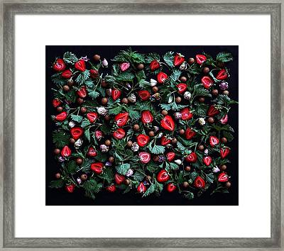 My Real Strawberry Patch Framed Print