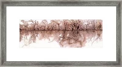 My Serenity Framed Print