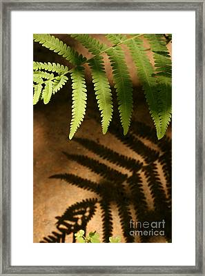 My Shadow Framed Print by Jeannie Burleson