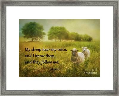 My Sheep Hear My Voice Framed Print