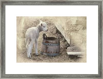 Framed Print featuring the photograph My Shepherd by Robin-Lee Vieira