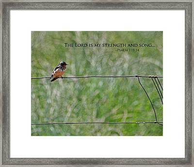 My Strength Framed Print by Bonnie Bruno
