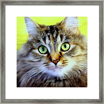 My Sweet Lil Beast Framed Print
