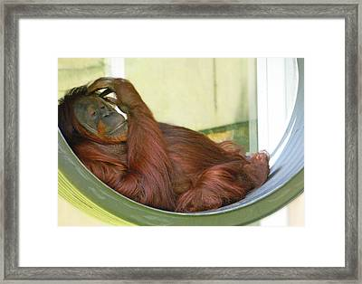 My Thinking Place Framed Print